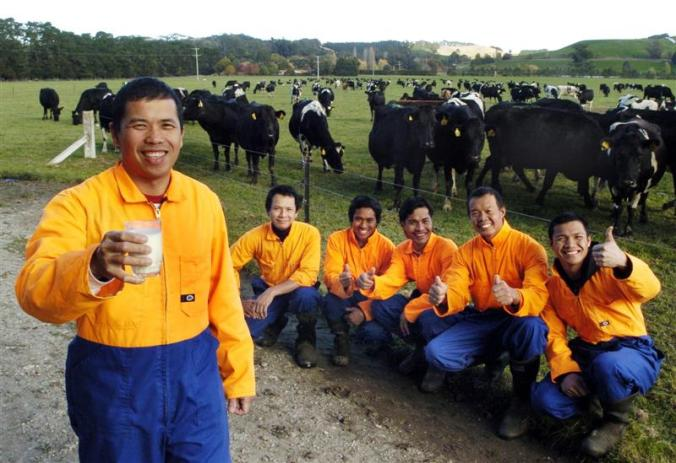 Six of the seven Filipinos who work on Greg and Kelly Kirkwood's North Otago dairy farm are (from left) Neil Molina, Reis Pe, Eric George, Saldy Barroga, Roel Gonzales and Jeorge Barroga.Photo by Gerard O'Brien, thanks and acknowledgment to the Otago Daily Times!